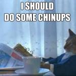 chinupcat
