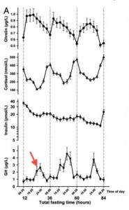 Growth hormone goes up, insulin and cortisol go done. Ghrelin (the hunger hormone) spikes, but then falls off.